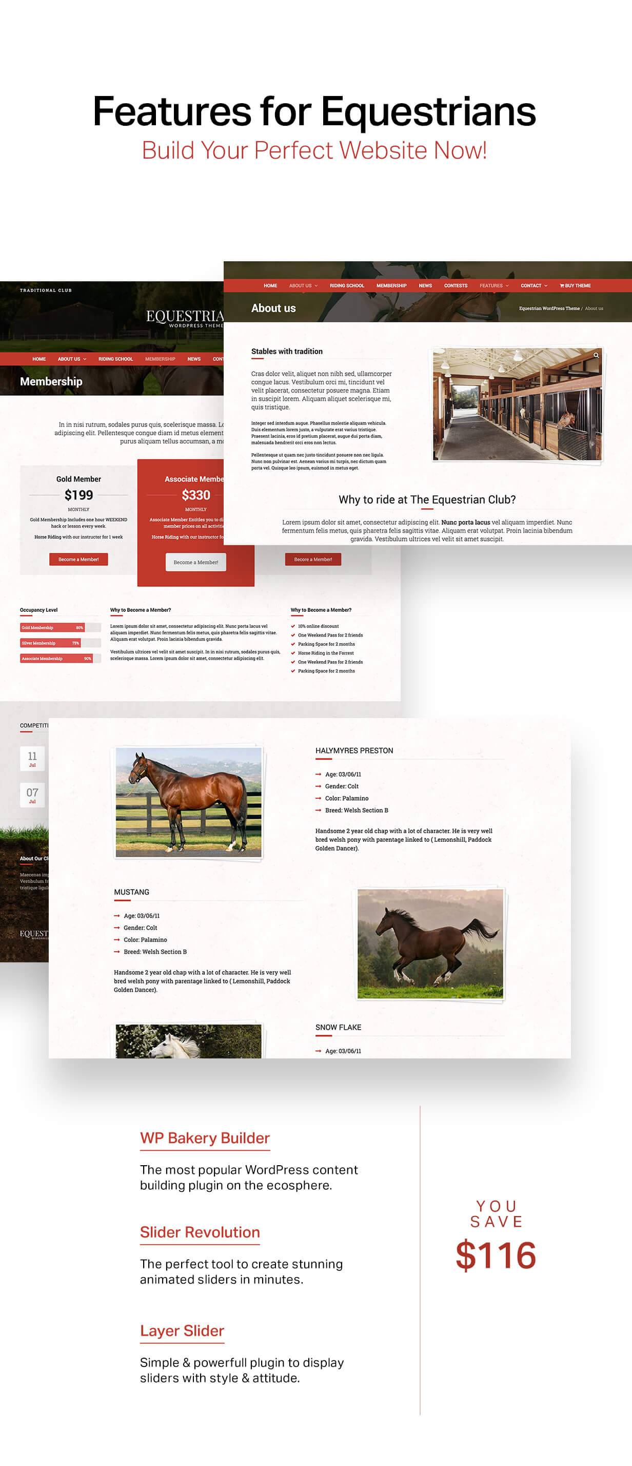 Equestrian - Horses and Stables WordPress Theme - 6